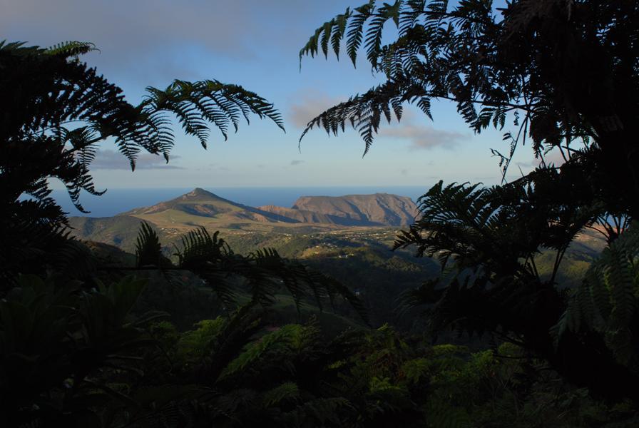 Flagstaff & Barn from Peaks by Ed Thorpe